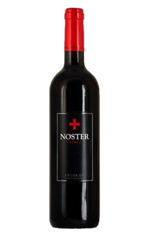 Noster Inicial DOQ 2017